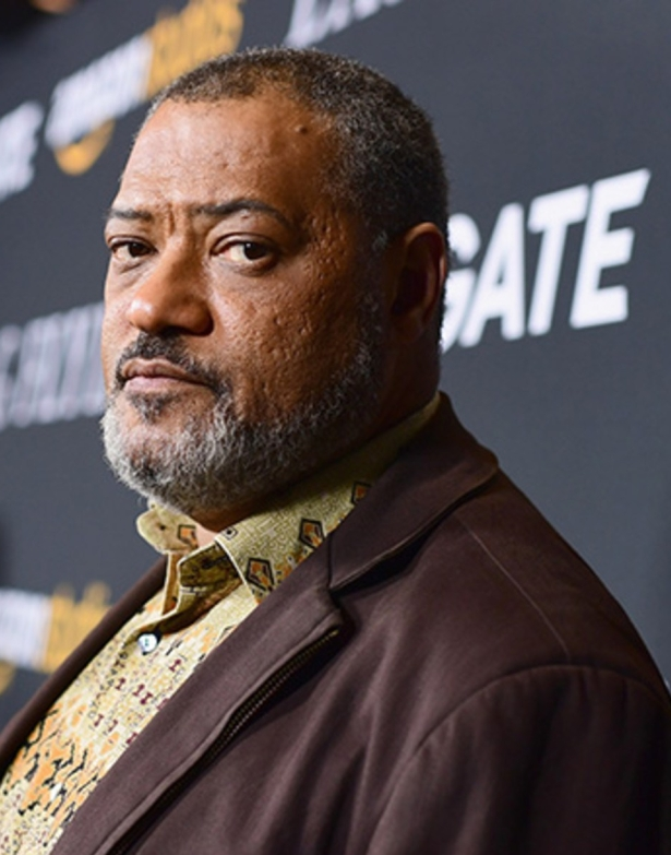 "LOS ANGELES, CA - NOVEMBER 01: Laurence Fishburne attends the premiere of Amazon's ""Last Flag Flying"" at DGA Theater on November 1, 2017 in Los Angeles, California. (Photo by Emma McIntyre/Getty Images)"