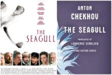 seagull chekhov
