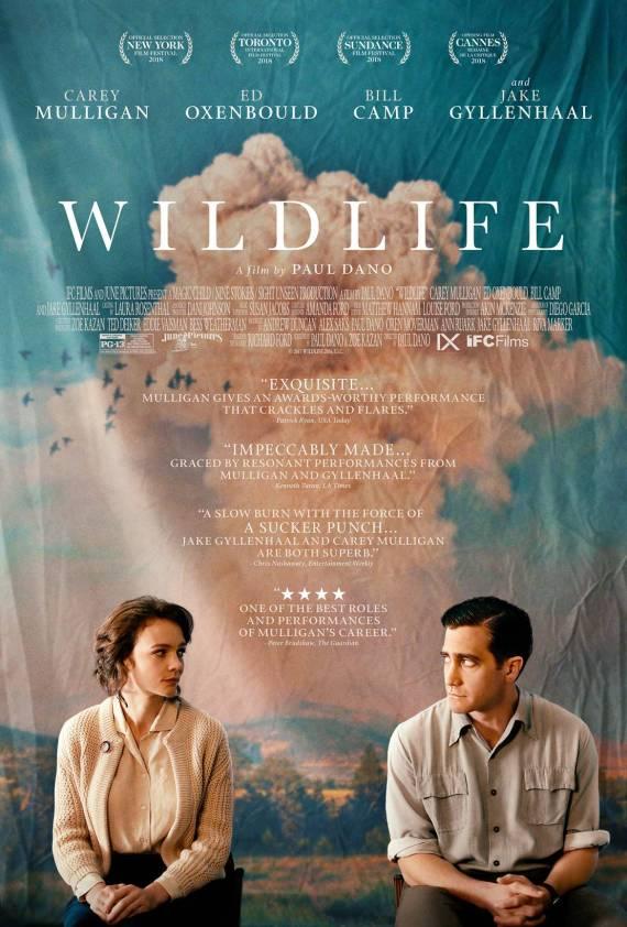 wildlife_film